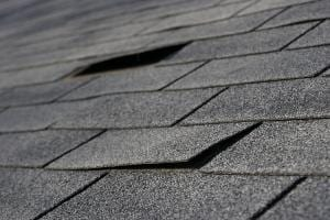 Lifted Shingles on Roof